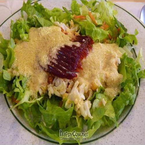 """Photo of CLOSED: Vegetariano  by <a href=""""/members/profile/Nihacc"""">Nihacc</a> <br/>Salad <br/> January 11, 2011  - <a href='/contact/abuse/image/1124/6982'>Report</a>"""