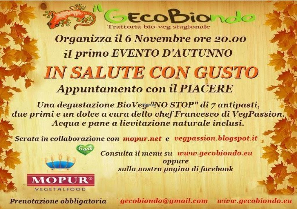 "Photo of CLOSED: Gecobiondo  by <a href=""/members/profile/fbar"">fbar</a> <br/>IN SALUTE CON GUSTO <br/> November 3, 2016  - <a href='/contact/abuse/image/11272/186331'>Report</a>"
