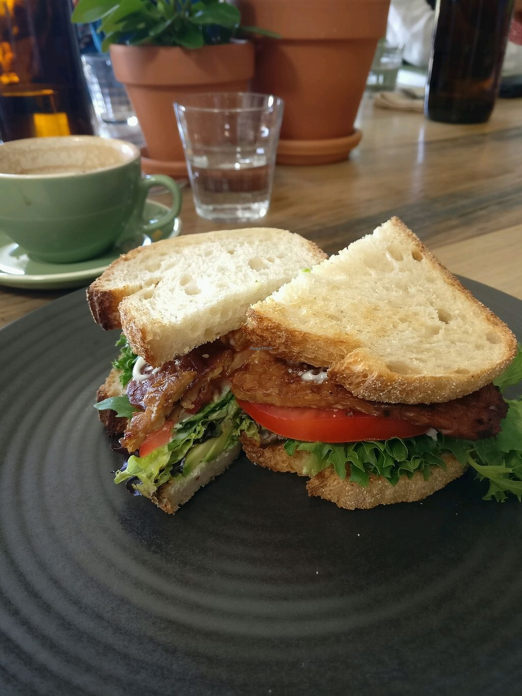 """Photo of One for the Crow  by <a href=""""/members/profile/Aloo"""">Aloo</a> <br/>the BLT with avo <br/> March 18, 2018  - <a href='/contact/abuse/image/112836/372227'>Report</a>"""