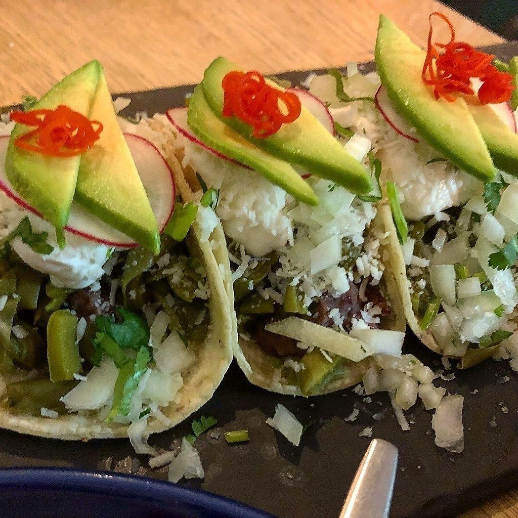 "Photo of Taqueria El Rey  by <a href=""/members/profile/SeitanSeitanSeitan"">SeitanSeitanSeitan</a> <br/>Taco de nopal, cactus tacos <br/> February 27, 2018  - <a href='/contact/abuse/image/113097/364497'>Report</a>"