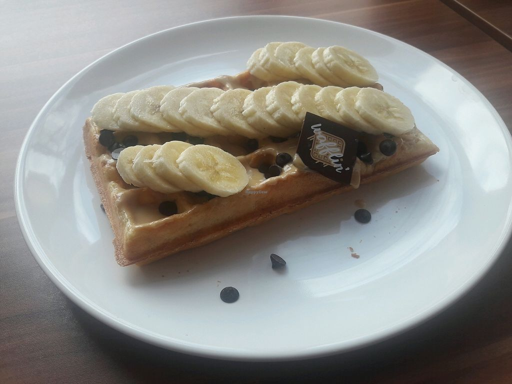 """Photo of Wafflin'  by <a href=""""/members/profile/Scarify"""">Scarify</a> <br/>Peanutbutter, chocolate, banana <br/> March 30, 2018  - <a href='/contact/abuse/image/113121/378279'>Report</a>"""