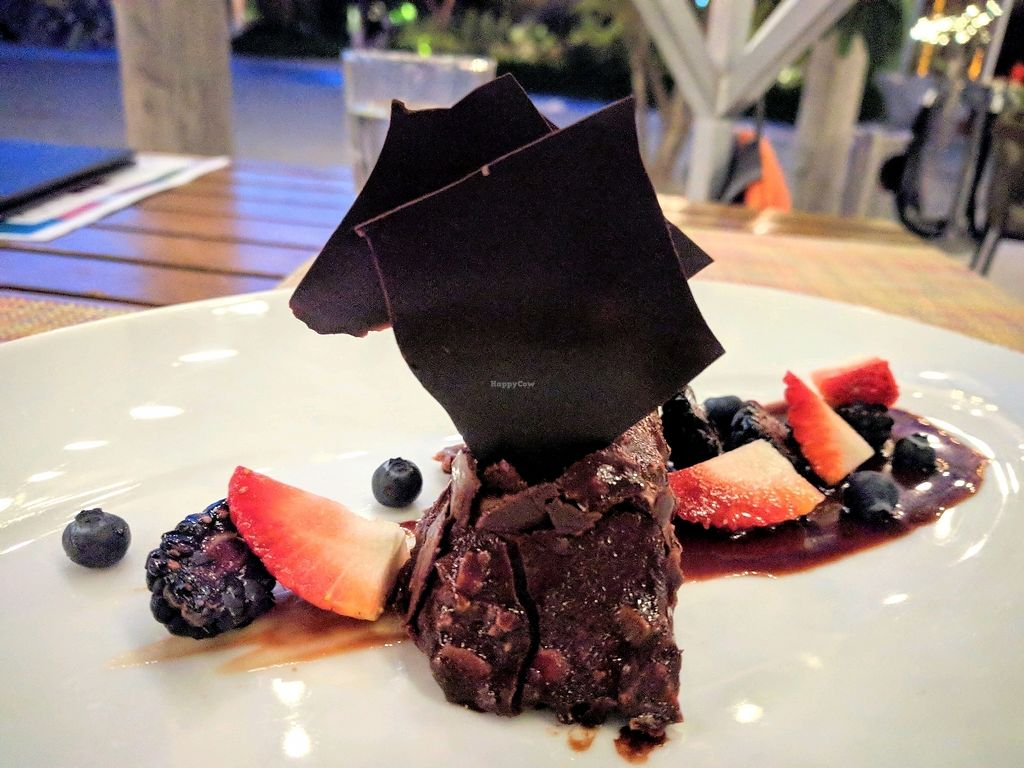"""Photo of Venazu  by <a href=""""/members/profile/The%20Hungry%20Vegan"""">The Hungry Vegan</a> <br/>Vegan, Gluten-free Chocolate Cake <br/> February 27, 2018  - <a href='/contact/abuse/image/113151/364639'>Report</a>"""
