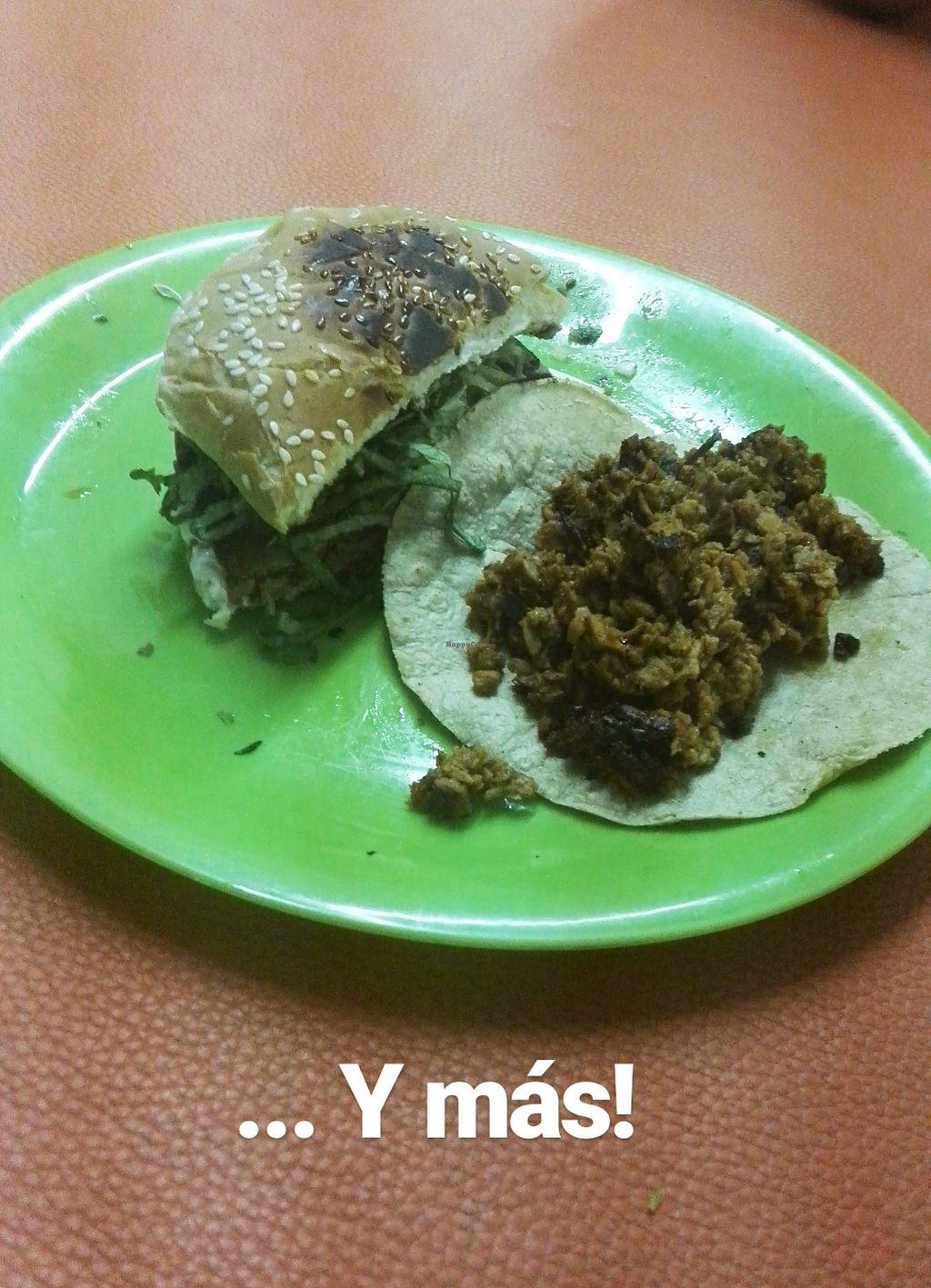 "Photo of Taco Station  by <a href=""/members/profile/Caroly"">Caroly</a> <br/>Hamburguesa y más tacos. hay de todo! <br/> March 25, 2018  - <a href='/contact/abuse/image/113356/375720'>Report</a>"