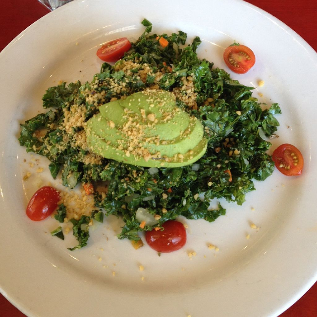 "Photo of CLOSED: Herbivore - Berkeley  by <a href=""/members/profile/Julianabanana"">Julianabanana</a> <br/>Raw Kale Salad <br/> April 23, 2016  - <a href='/contact/abuse/image/11367/145914'>Report</a>"
