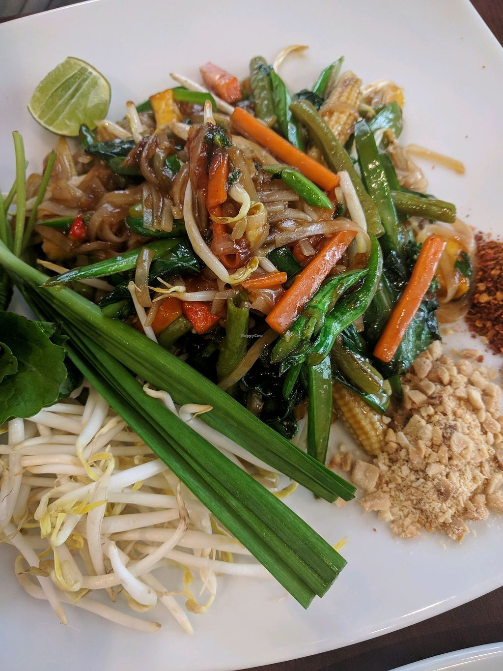 "Photo of ThaiExpress  by <a href=""/members/profile/VeganSoapDude"">VeganSoapDude</a> <br/>Phad Thai <br/> March 6, 2018  - <a href='/contact/abuse/image/113826/367559'>Report</a>"
