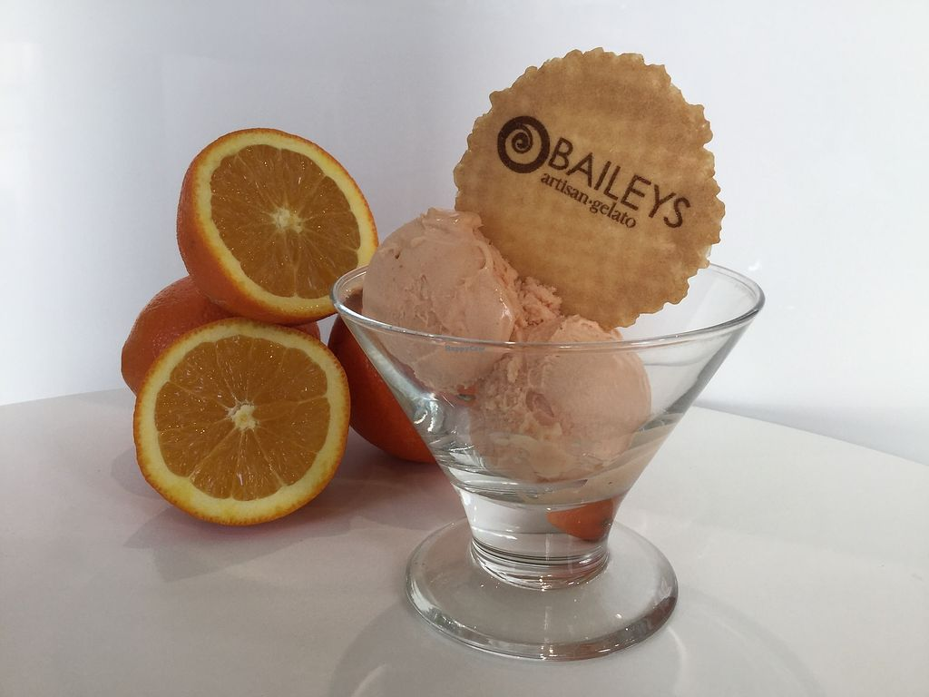 """Photo of Baileys Artisan Gelato  by <a href=""""/members/profile/MargaretBailey"""">MargaretBailey</a> <br/>The chief ingredient in our vegan orange sorbetto is <br/> March 7, 2018  - <a href='/contact/abuse/image/113940/367888'>Report</a>"""