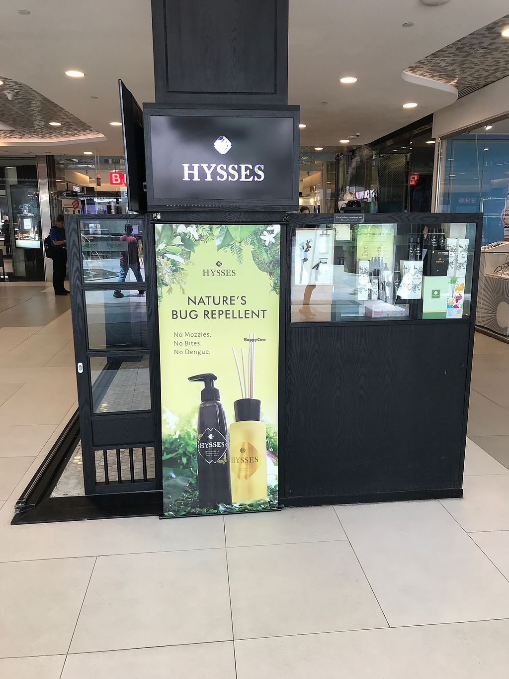 """Photo of Hysses - Bugis Junction  by <a href=""""/members/profile/Sweetveganneko"""">Sweetveganneko</a> <br/>In the middle of the walkway <br/> March 14, 2018  - <a href='/contact/abuse/image/114418/370420'>Report</a>"""