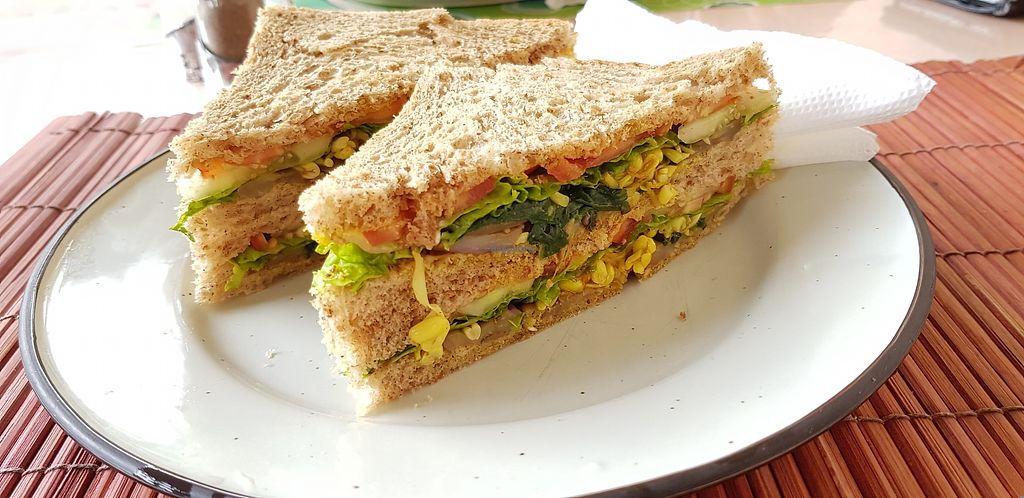 """Photo of Pachamama Caffe  by <a href=""""/members/profile/Cathy2001"""">Cathy2001</a> <br/>Pachamama Vegetable sandwich with brown bread <br/> March 13, 2018  - <a href='/contact/abuse/image/114431/370106'>Report</a>"""