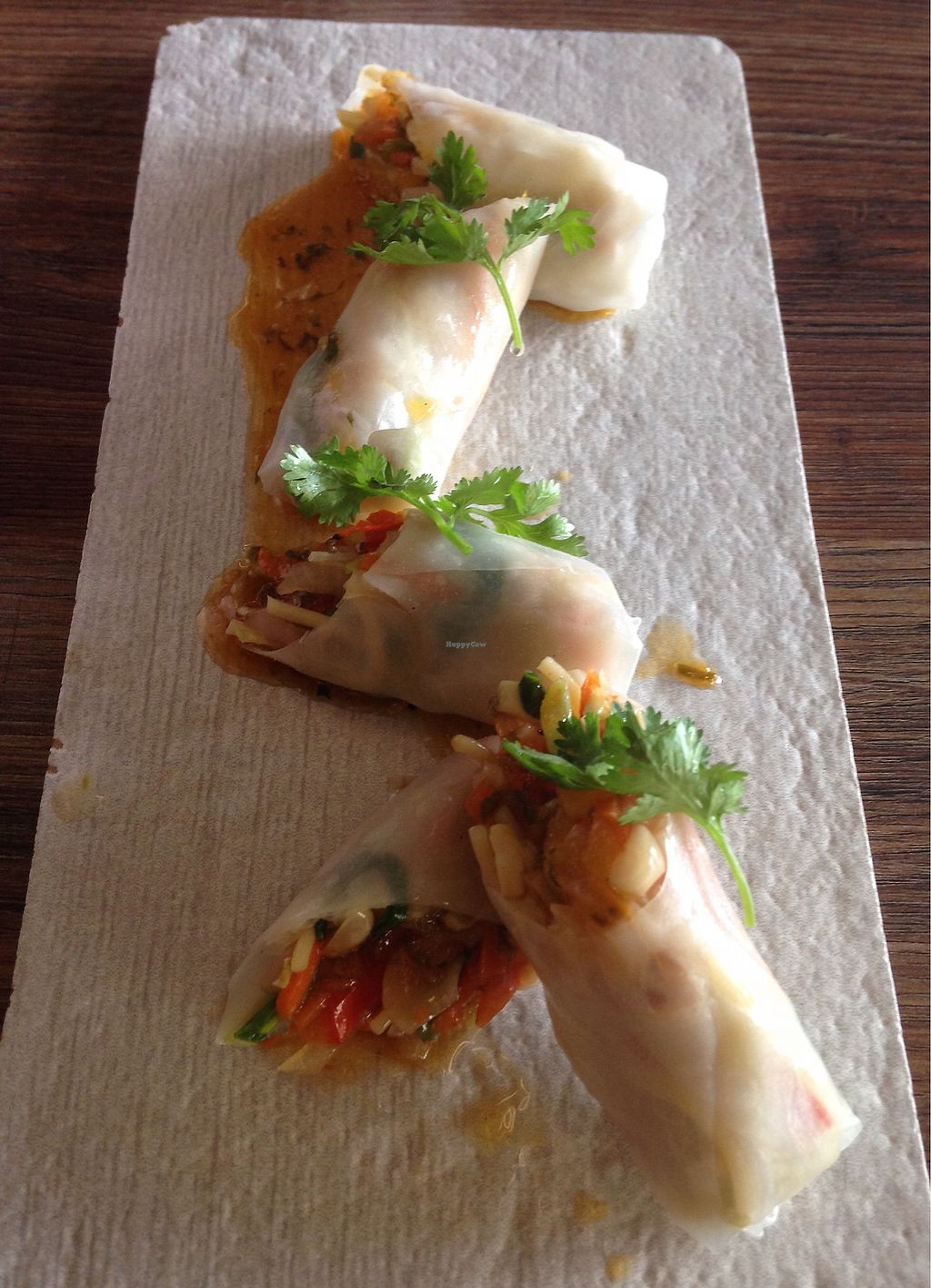 """Photo of Hakuna Matata Restaurant  by <a href=""""/members/profile/SophieCarolyn"""">SophieCarolyn</a> <br/>Rice paper rolls <br/> March 14, 2018  - <a href='/contact/abuse/image/114529/370406'>Report</a>"""