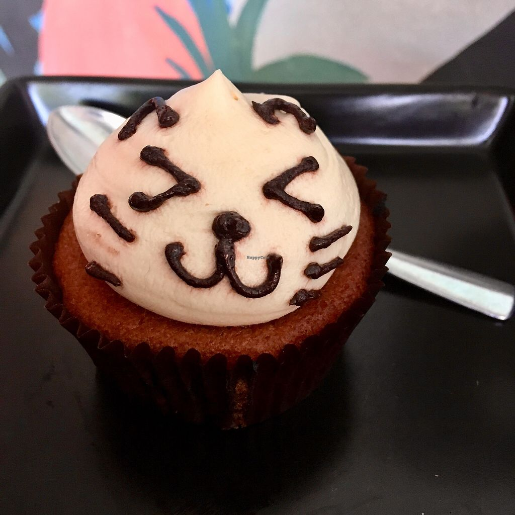 """Photo of Kitty Cafe  by <a href=""""/members/profile/BigVeegs"""">BigVeegs</a> <br/>Kitty cup cake <br/> March 21, 2018  - <a href='/contact/abuse/image/114634/373659'>Report</a>"""