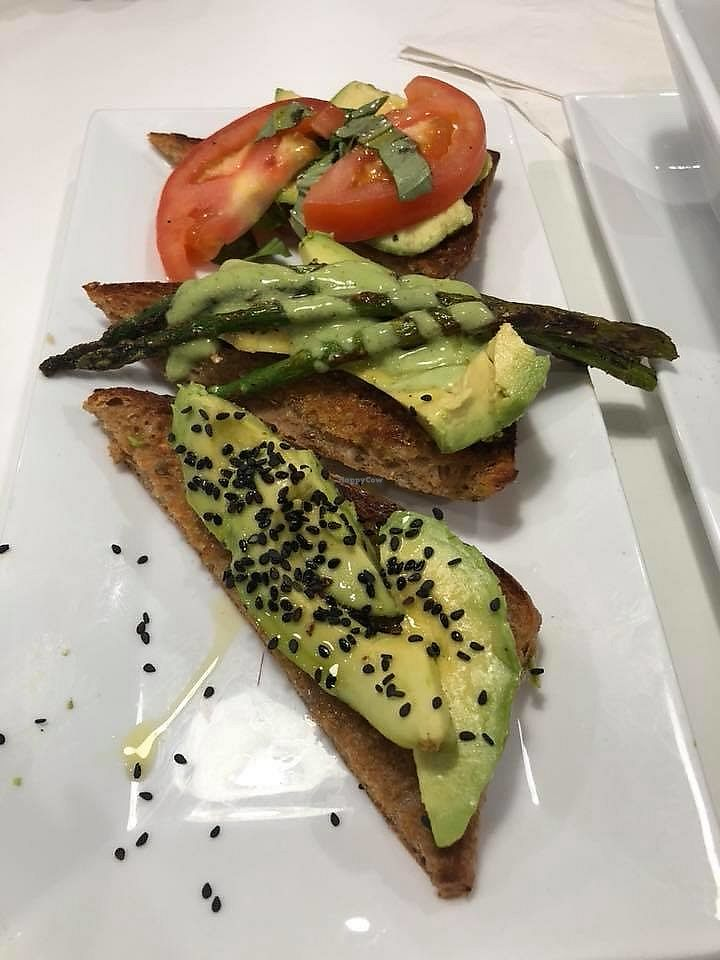 """Photo of The Modern Vegan  by <a href=""""/members/profile/plantbasedjetsetter"""">plantbasedjetsetter</a> <br/>Avocado toast <br/> March 16, 2018  - <a href='/contact/abuse/image/114695/371144'>Report</a>"""