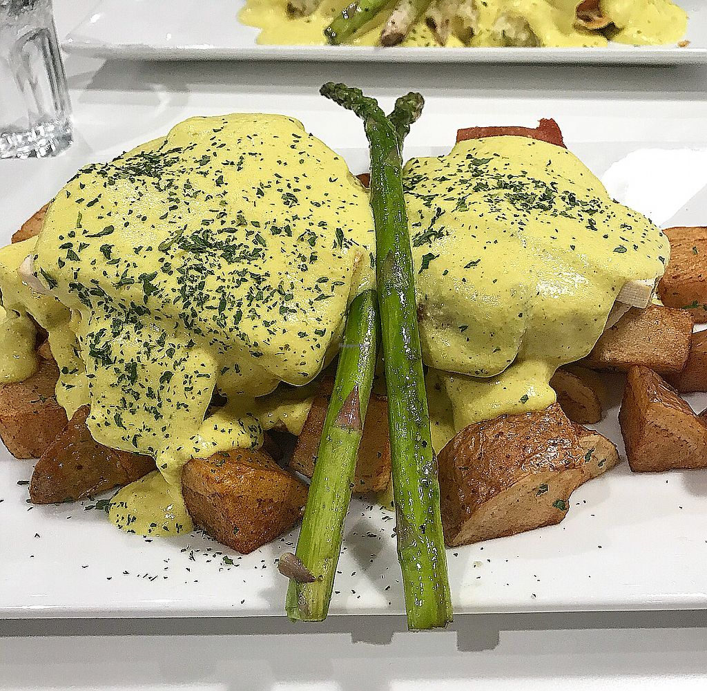 """Photo of The Modern Vegan  by <a href=""""/members/profile/Sirroda"""">Sirroda</a> <br/>V'Eggs Benny <br/> April 8, 2018  - <a href='/contact/abuse/image/114695/382597'>Report</a>"""