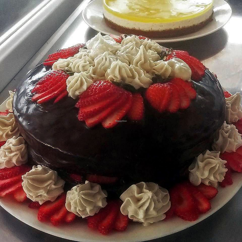 "Photo of From Scratch  by <a href=""/members/profile/karlaess"">karlaess</a> <br/>Chocolate cake <br/> March 16, 2018  - <a href='/contact/abuse/image/114706/371490'>Report</a>"