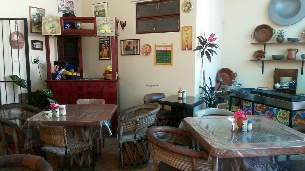 """Photo of Comiendo Sano Mi Tienda de la Salud  by <a href=""""/members/profile/titina"""">titina</a> <br/>our dining space looking at the indoor courtyard  <br/> April 12, 2018  - <a href='/contact/abuse/image/114908/384785'>Report</a>"""