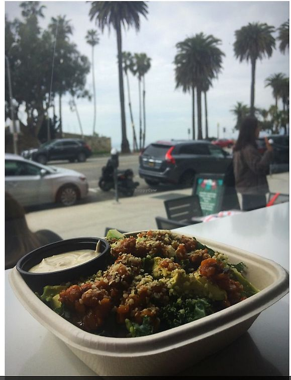 """Photo of Earthbar - Ocean Ave  by <a href=""""/members/profile/ForGoodnessSeyks"""">ForGoodnessSeyks</a> <br/>I also got their savory Detox Bowl which had Tempeh marinated in Siracha, raw kale, avocado, other delicious bits, and I got the vegan cashew cheese on the side.  <br/> March 27, 2018  - <a href='/contact/abuse/image/114927/376962'>Report</a>"""