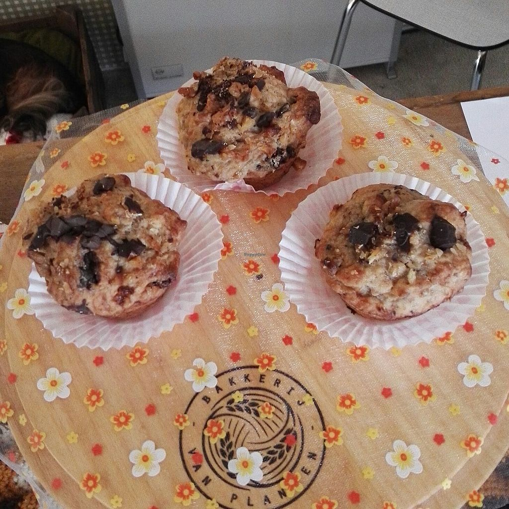 """Photo of De Groene Panter  by <a href=""""/members/profile/thehappychickpea"""">thehappychickpea</a> <br/>Delicious vegan chocolate, banana, walnut muffins <br/> March 22, 2018  - <a href='/contact/abuse/image/114972/374277'>Report</a>"""