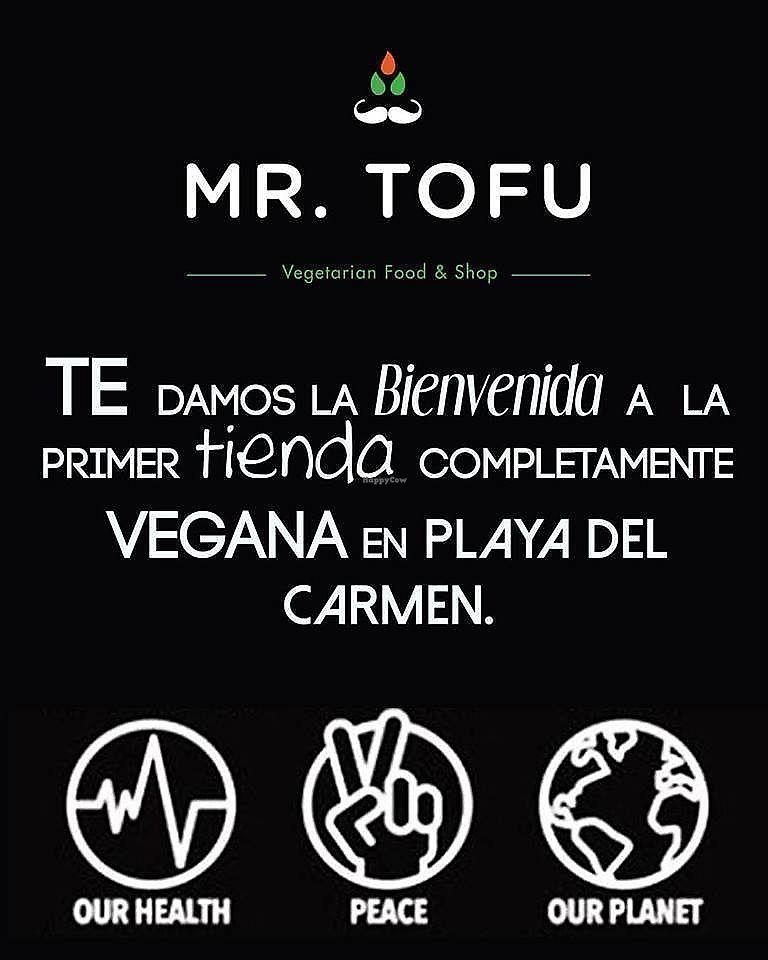 "Photo of Mr Tofu  by <a href=""/members/profile/MrTofuPlaya"">MrTofuPlaya</a> <br/>TE DAMOS LA BIENVENIDA! <br/> March 19, 2018  - <a href='/contact/abuse/image/115033/372971'>Report</a>"