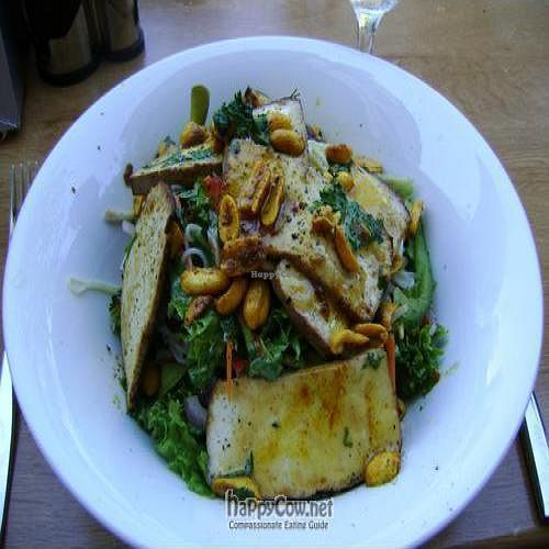 """Photo of Elemi Cafe Bar Bistro Vegetariano  by <a href=""""/members/profile/Jo%20Kay"""">Jo Kay</a> <br/>Smoked tofu with rice noodles, spicy peanuts and salad <br/> August 23, 2009  - <a href='/contact/abuse/image/11512/2491'>Report</a>"""