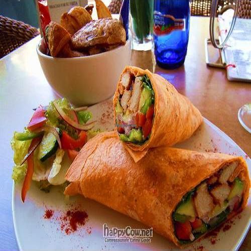 """Photo of Elemi Cafe Bar Bistro Vegetariano  by <a href=""""/members/profile/BettyBoo"""">BettyBoo</a> <br/>Los Angeles wrap <br/> August 8, 2011  - <a href='/contact/abuse/image/11512/9993'>Report</a>"""