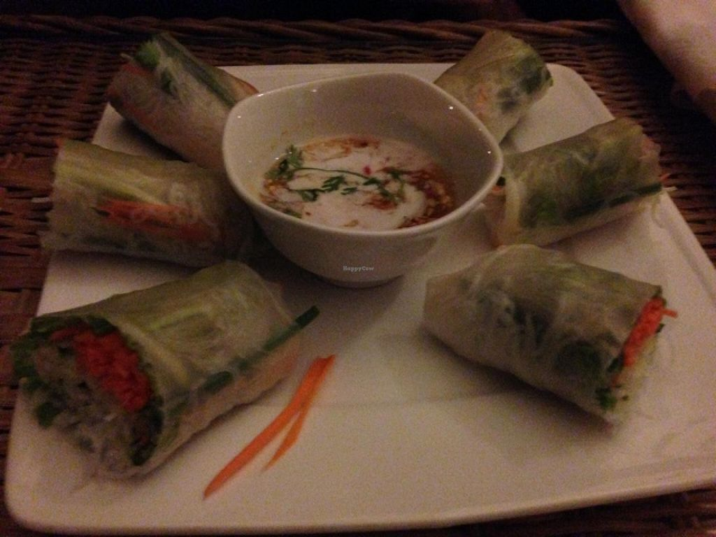 """Photo of CLOSED: The Terrace on 95 - K'NYAY  by <a href=""""/members/profile/AliceGiusto"""">AliceGiusto</a> <br/>fresh spring rolls <br/> June 29, 2015  - <a href='/contact/abuse/image/11520/107698'>Report</a>"""