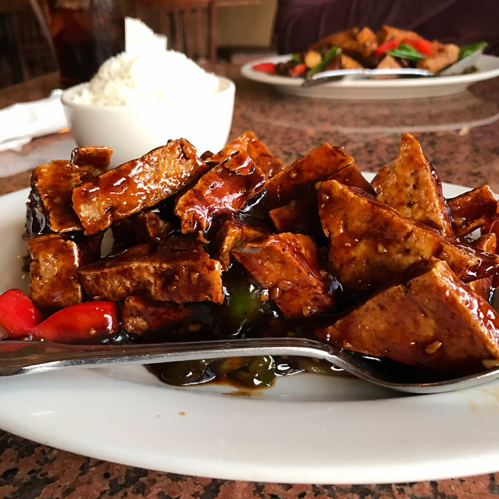 """Photo of Hop Tung  by <a href=""""/members/profile/DavidPatrick"""">DavidPatrick</a> <br/>General TSO Tofu <br/> March 13, 2017  - <a href='/contact/abuse/image/11524/235770'>Report</a>"""