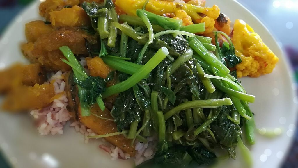 """Photo of Zhen Jie  by <a href=""""/members/profile/ChoyYuen"""">ChoyYuen</a> <br/>Brown rice with 3 dishes -pumpkin, Thai curry and green veggies. Big serving portion costs 40 baht only <br/> March 24, 2018  - <a href='/contact/abuse/image/115327/375089'>Report</a>"""
