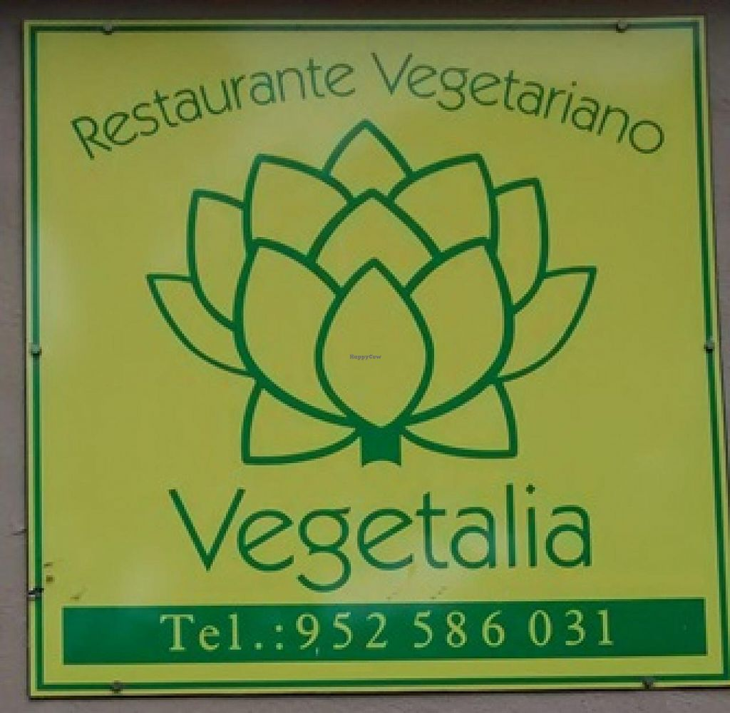 """Photo of Vegetalia  by <a href=""""/members/profile/LeFunks"""">LeFunks</a> <br/>Vegetalia sign outside the restaurant <br/> March 23, 2015  - <a href='/contact/abuse/image/1153/96676'>Report</a>"""