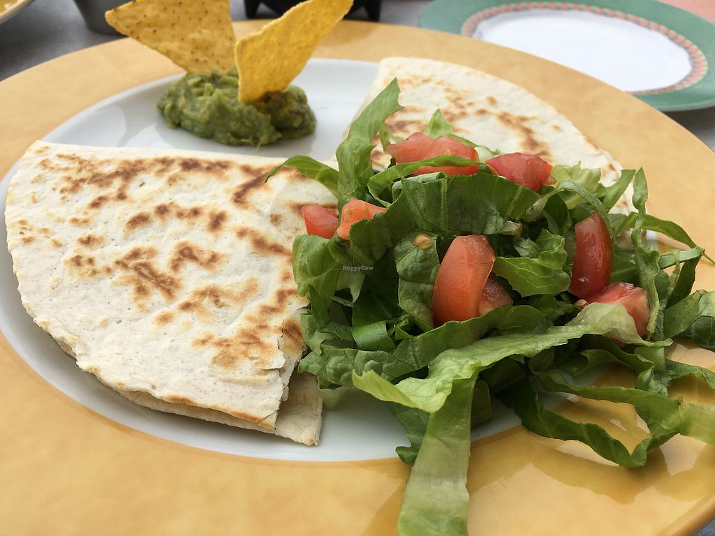 """Photo of Senor Zorbas  by <a href=""""/members/profile/HappyVegantChick"""">HappyVegantChick</a> <br/>Black bean quesadilla (no cheese) <br/> May 23, 2018  - <a href='/contact/abuse/image/11551/403712'>Report</a>"""