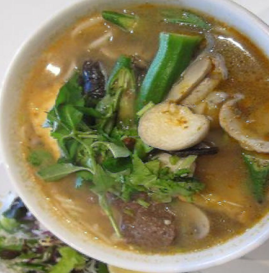 """Photo of Loving Hut  by <a href=""""/members/profile/MaitreyaBelmore"""">MaitreyaBelmore</a> <br/>Vegetarian Beef Laksa Noodle Soup $9.00 <br/> October 15, 2010  - <a href='/contact/abuse/image/11553/251267'>Report</a>"""