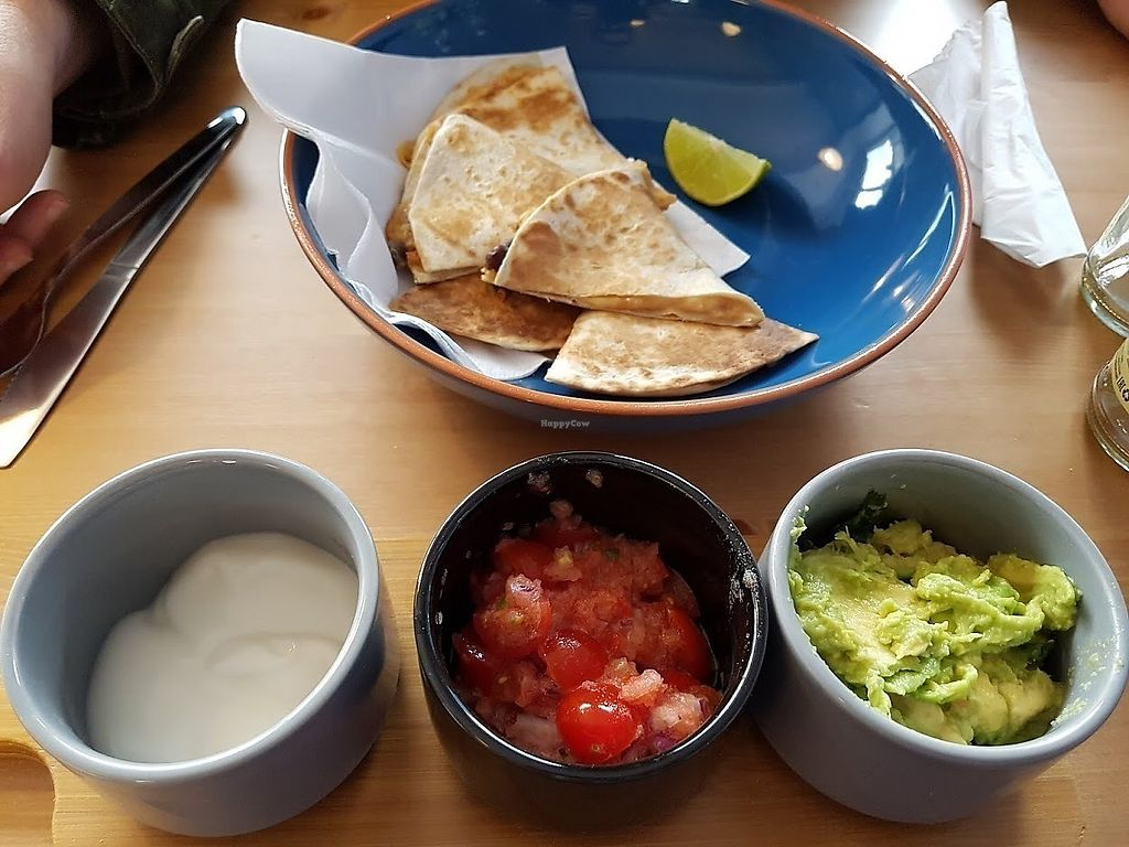 """Photo of Meow Cafe  by <a href=""""/members/profile/Impressive%20Food"""">Impressive Food</a> <br/>The specials change every day. This time it included quesadillas with guacamole, salsa and sour cream <br/> March 31, 2018  - <a href='/contact/abuse/image/115728/378834'>Report</a>"""