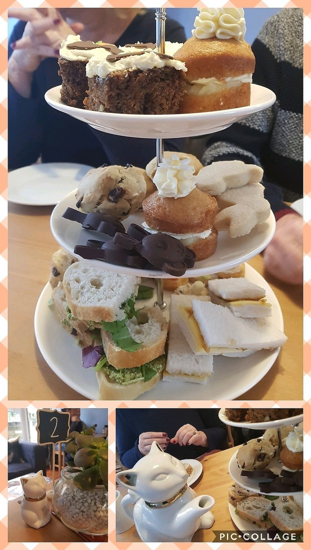 """Photo of Meow Cafe  by <a href=""""/members/profile/Knitasfuck"""">Knitasfuck</a> <br/>Eaater Sunday afternoon tea (vegan), it was delicious  <br/> April 1, 2018  - <a href='/contact/abuse/image/115728/379423'>Report</a>"""