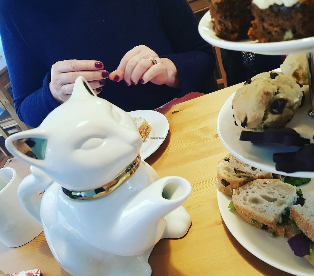 """Photo of Meow Cafe  by <a href=""""/members/profile/Knitasfuck"""">Knitasfuck</a> <br/>Easter Sunday afternoon tea with a cat shaped tea pot <br/> April 1, 2018  - <a href='/contact/abuse/image/115728/379436'>Report</a>"""