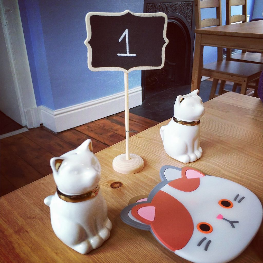 """Photo of Meow Cafe  by <a href=""""/members/profile/madhatterspantry"""">madhatterspantry</a> <br/>Cute table setting <br/> April 15, 2018  - <a href='/contact/abuse/image/115728/386251'>Report</a>"""