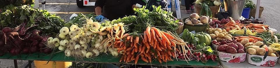 """Photo of Kapuskasing Farmers Market  by <a href=""""/members/profile/daisiesdancing"""">daisiesdancing</a> <br/>Local and fresh vegetables available <br/> March 27, 2018  - <a href='/contact/abuse/image/115916/376945'>Report</a>"""