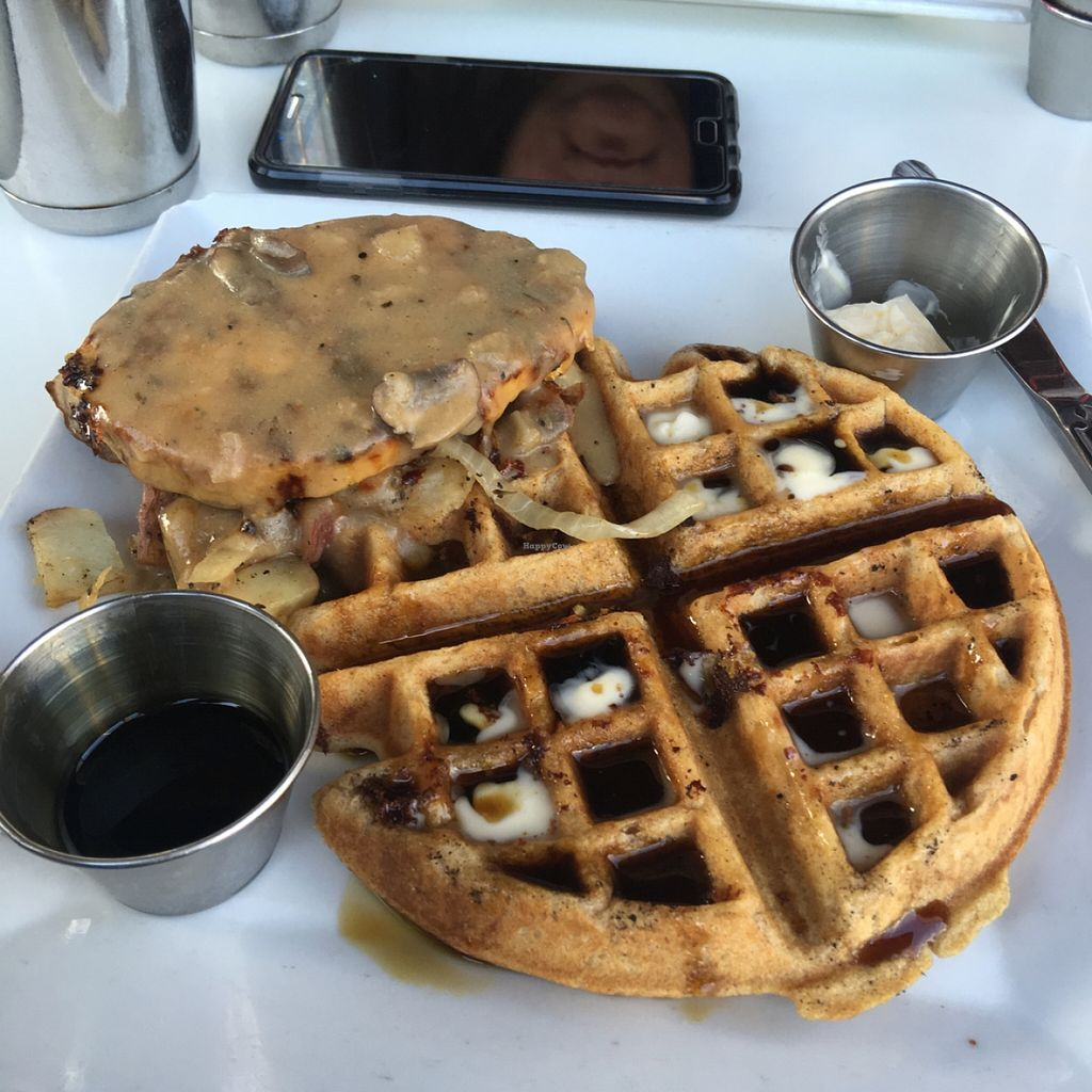 "Photo of Flore  by <a href=""/members/profile/xmrfigx"">xmrfigx</a> <br/>Delicious vegan chik'n and waffles with mushroom gravy over potatoes <br/> February 22, 2016  - <a href='/contact/abuse/image/11631/137364'>Report</a>"