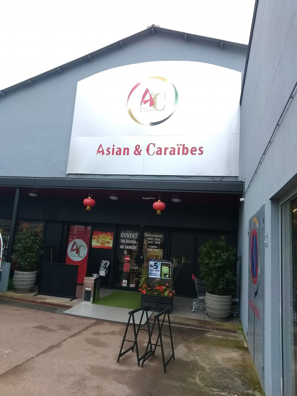 """Photo of Asian and Caribbean  by <a href=""""/members/profile/thenaturalfusions"""">thenaturalfusions</a> <br/>Asian & caribbean <br/> April 1, 2018  - <a href='/contact/abuse/image/116396/379522'>Report</a>"""