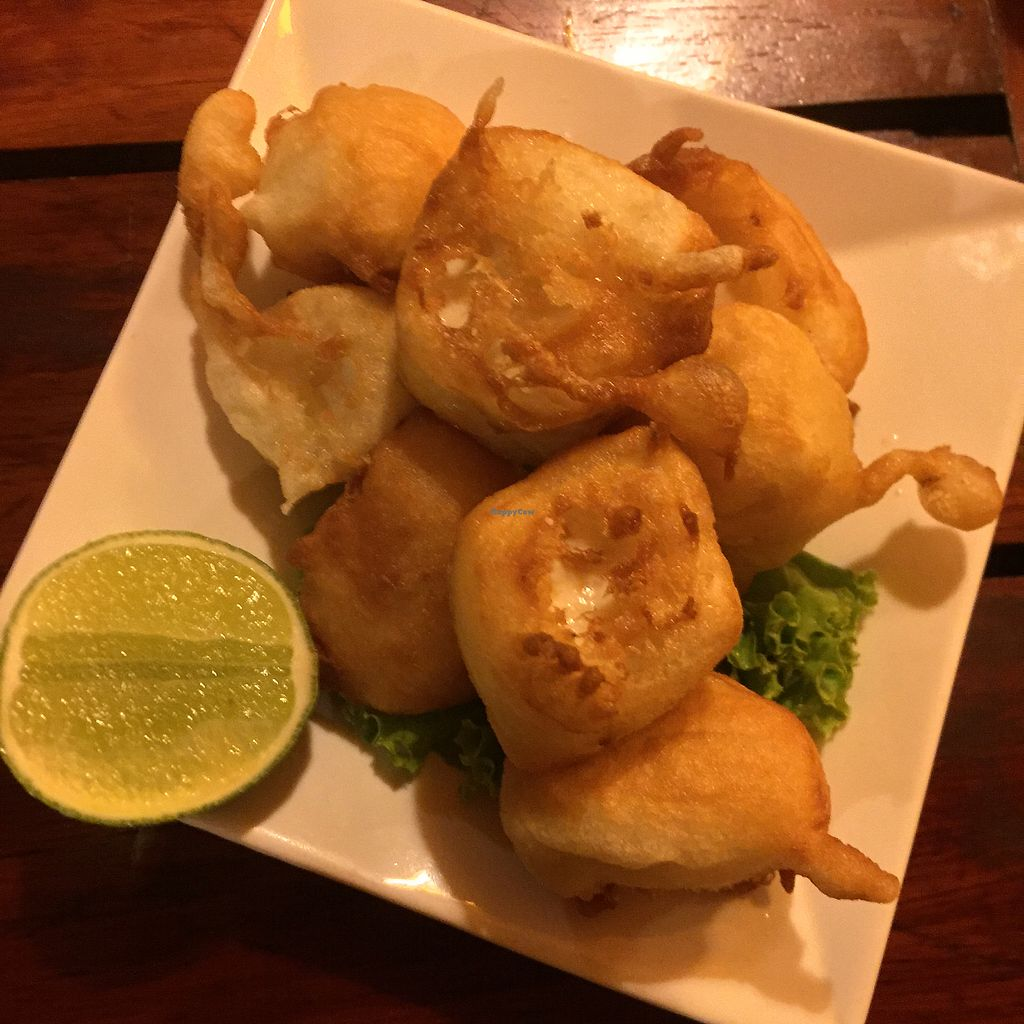 "Photo of Vitking House  by <a href=""/members/profile/ambermarie"">ambermarie</a> <br/>Deep fried tofu <br/> April 7, 2018  - <a href='/contact/abuse/image/11668/381885'>Report</a>"
