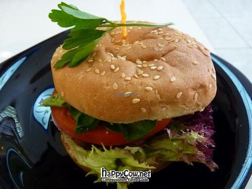 """Photo of Loving Hut - Valencia  by <a href=""""/members/profile/Nihacc"""">Nihacc</a> <br/>Vegan burger <br/> April 19, 2012  - <a href='/contact/abuse/image/1167/30719'>Report</a>"""