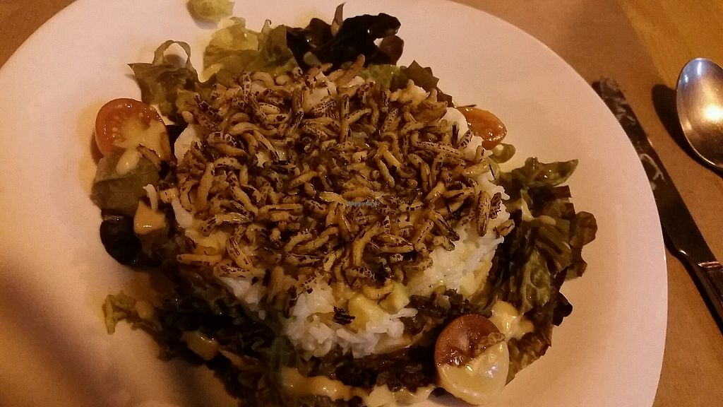"""Photo of La Tastaolletes  by <a href=""""/members/profile/LaurenSebek"""">LaurenSebek</a> <br/>rice salad <br/> August 31, 2017  - <a href='/contact/abuse/image/11681/299521'>Report</a>"""