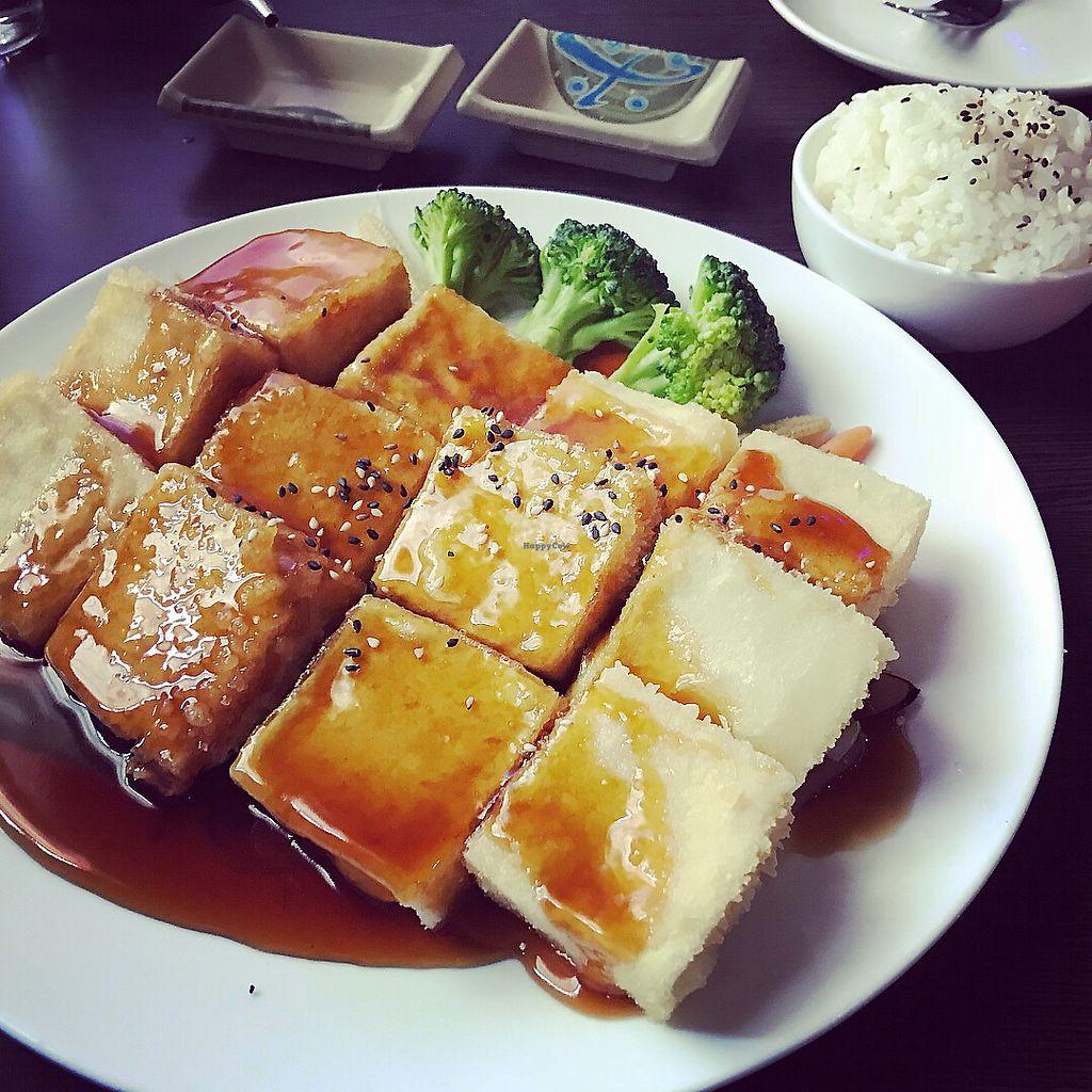 "Photo of Hajime  by <a href=""/members/profile/KarenTatur"">KarenTatur</a> <br/>Teriyaki Tofu <br/> April 8, 2018  - <a href='/contact/abuse/image/117092/382184'>Report</a>"