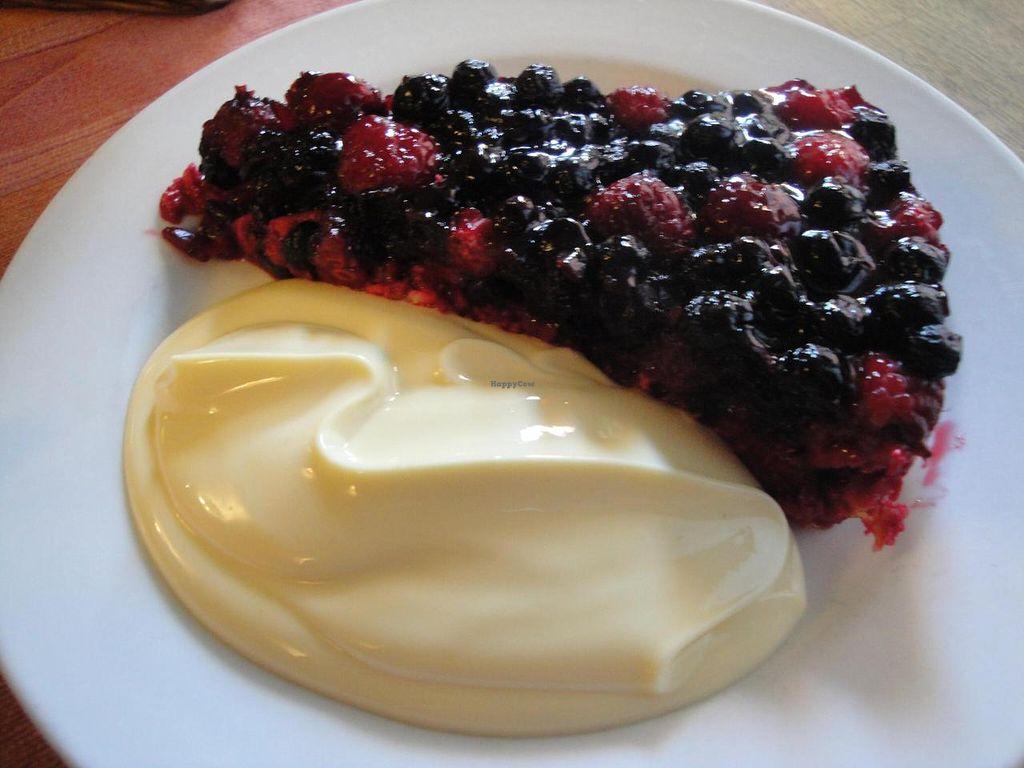 "Photo of Restaurang Solrosen  by <a href=""/members/profile/%2B%2B%2BVeGaNiSaToR%2B%2B%2B"">+++VeGaNiSaToR+++</a> <br/>Vegan dessert with berries and soya vanilla cream <br/> September 10, 2014  - <a href='/contact/abuse/image/1172/79476'>Report</a>"