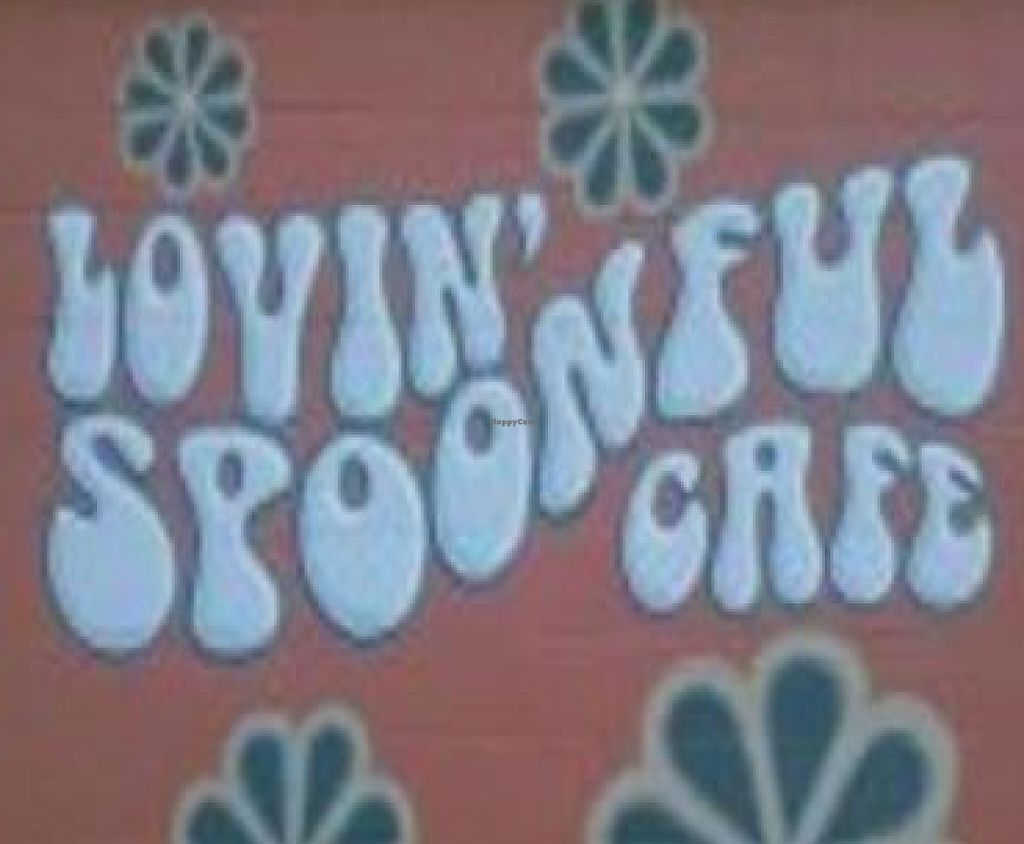 """Photo of CLOSED: Lovin' Spoonful Cafe  by <a href=""""/members/profile/hollyfrench"""">hollyfrench</a> <br/> March 19, 2010  - <a href='/contact/abuse/image/11744/224708'>Report</a>"""