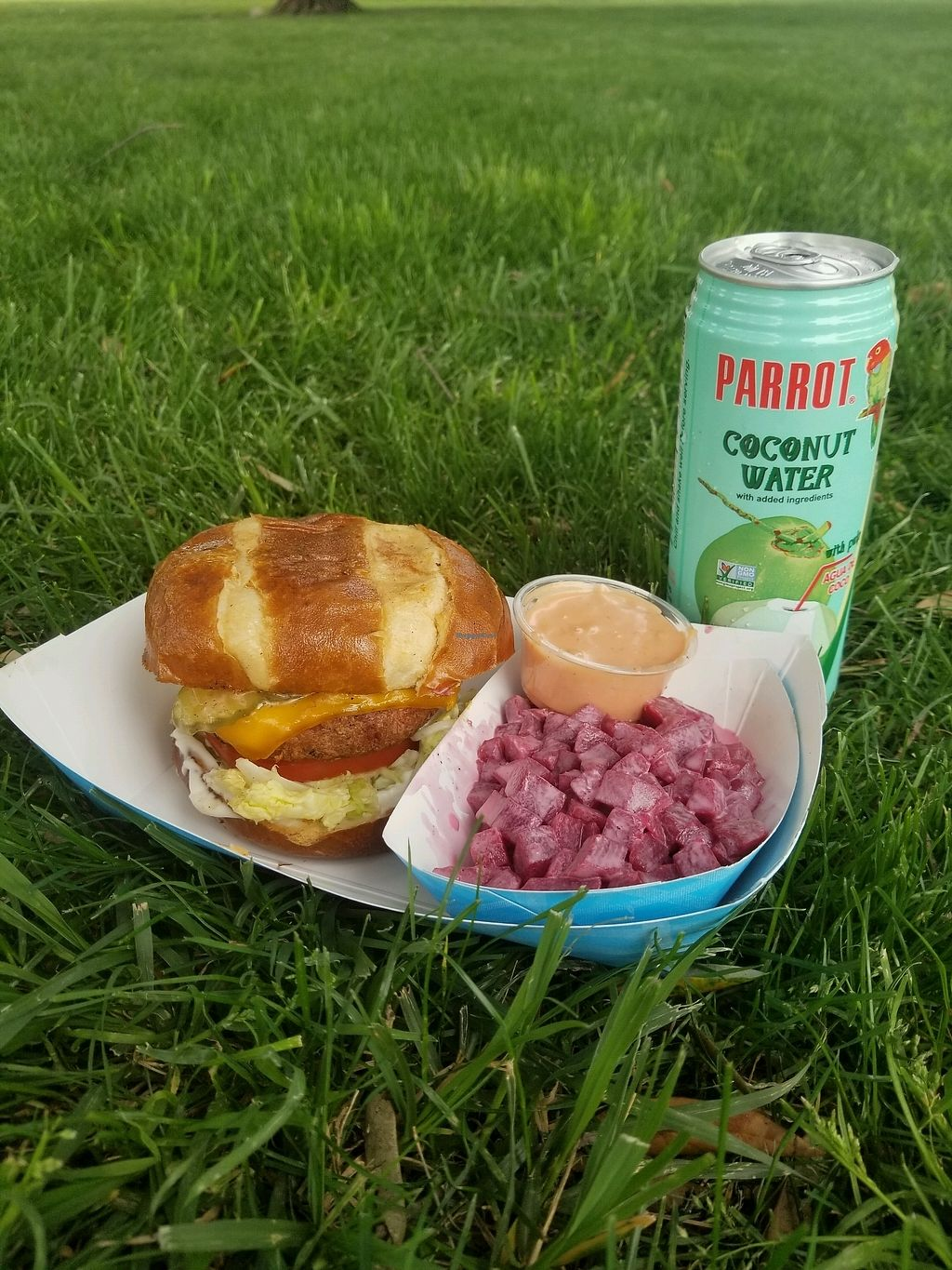 "Photo of Evolution Burger - Food Truck  by <a href=""/members/profile/SSIIXXAR"">SSIIXXAR</a> <br/>beyond burger, pretzel bun and beets and coconut water <br/> April 15, 2018  - <a href='/contact/abuse/image/117505/386540'>Report</a>"