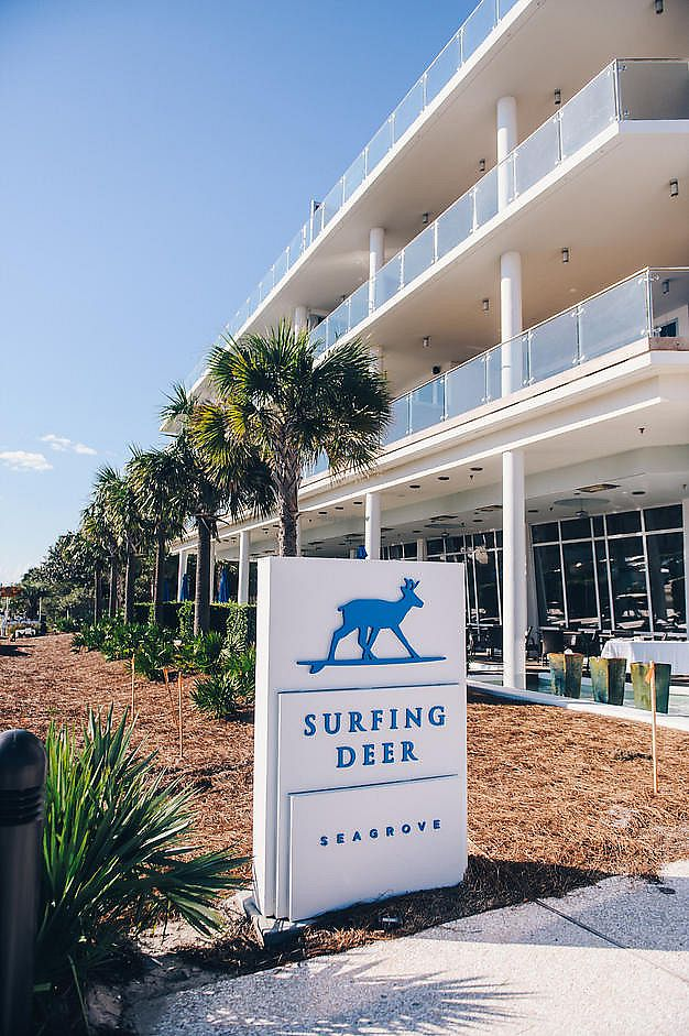 "Photo of Surfing Deer  by <a href=""/members/profile/G.Ham"">G.Ham</a> <br/>The Best Restaurant On 30A  <br/> April 14, 2018  - <a href='/contact/abuse/image/117685/385744'>Report</a>"