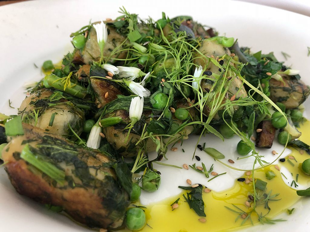 """Photo of Dr Legumes  by <a href=""""/members/profile/klove93"""">klove93</a> <br/>Delicious homemade gnocchi with nettles  <br/> April 16, 2018  - <a href='/contact/abuse/image/117826/386792'>Report</a>"""