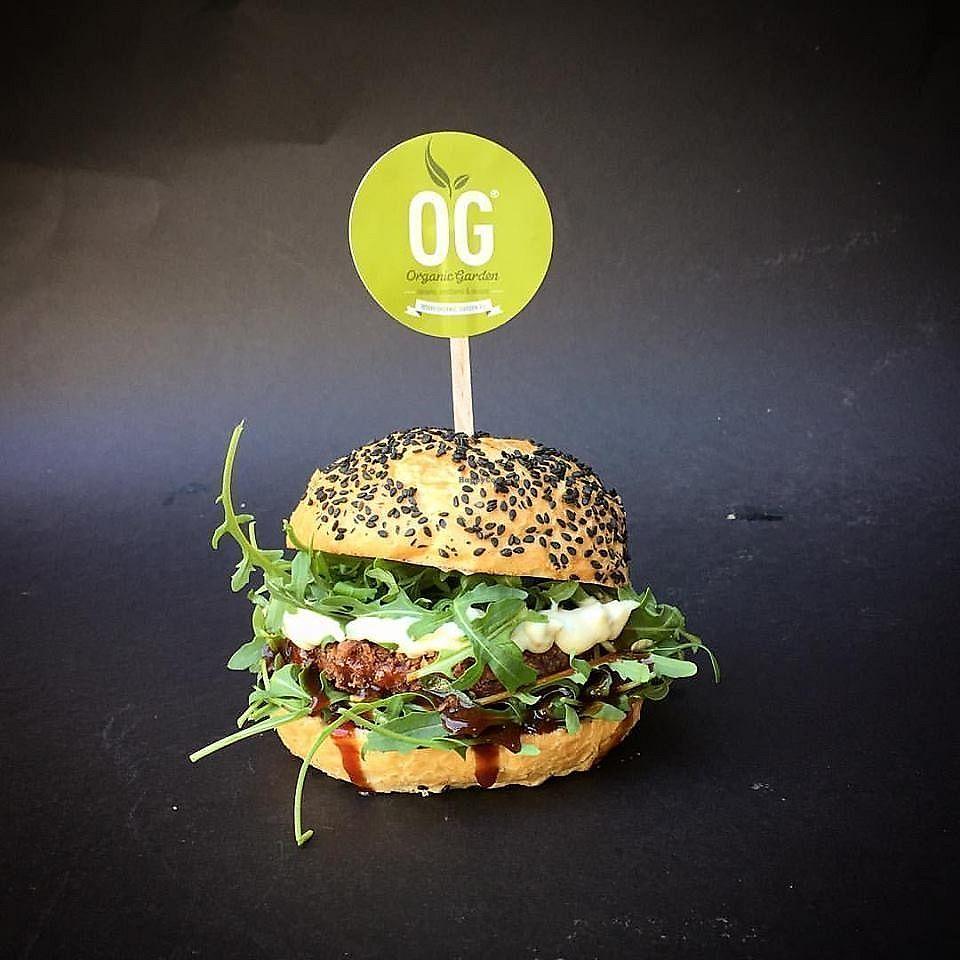 "Photo of Organic Garden  by <a href=""/members/profile/slovenianvegan"">slovenianvegan</a> <br/>Vegan burger <br/> April 17, 2018  - <a href='/contact/abuse/image/117930/387284'>Report</a>"
