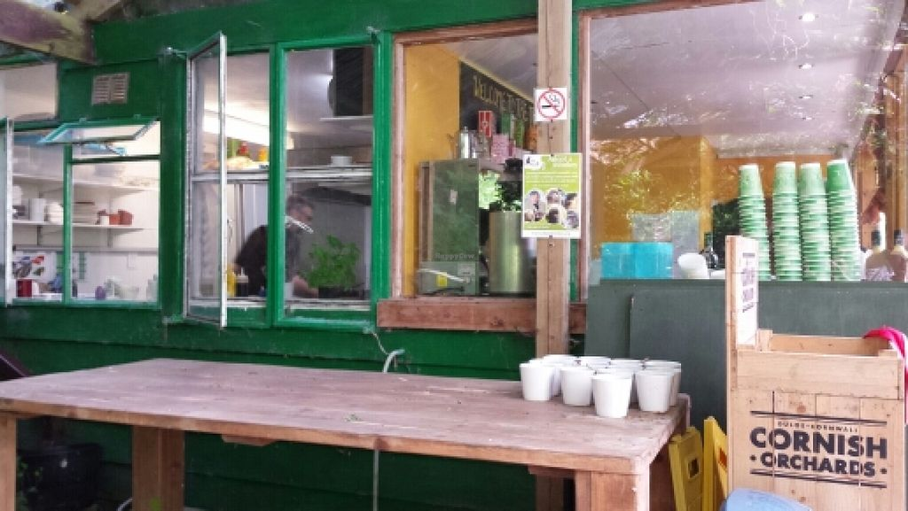 """Photo of Tree-Top Cafe  by <a href=""""/members/profile/Good%20for%20Vegans"""">Good for Vegans</a> <br/>View of kitchen and counter <br/> June 2, 2016  - <a href='/contact/abuse/image/11818/151909'>Report</a>"""