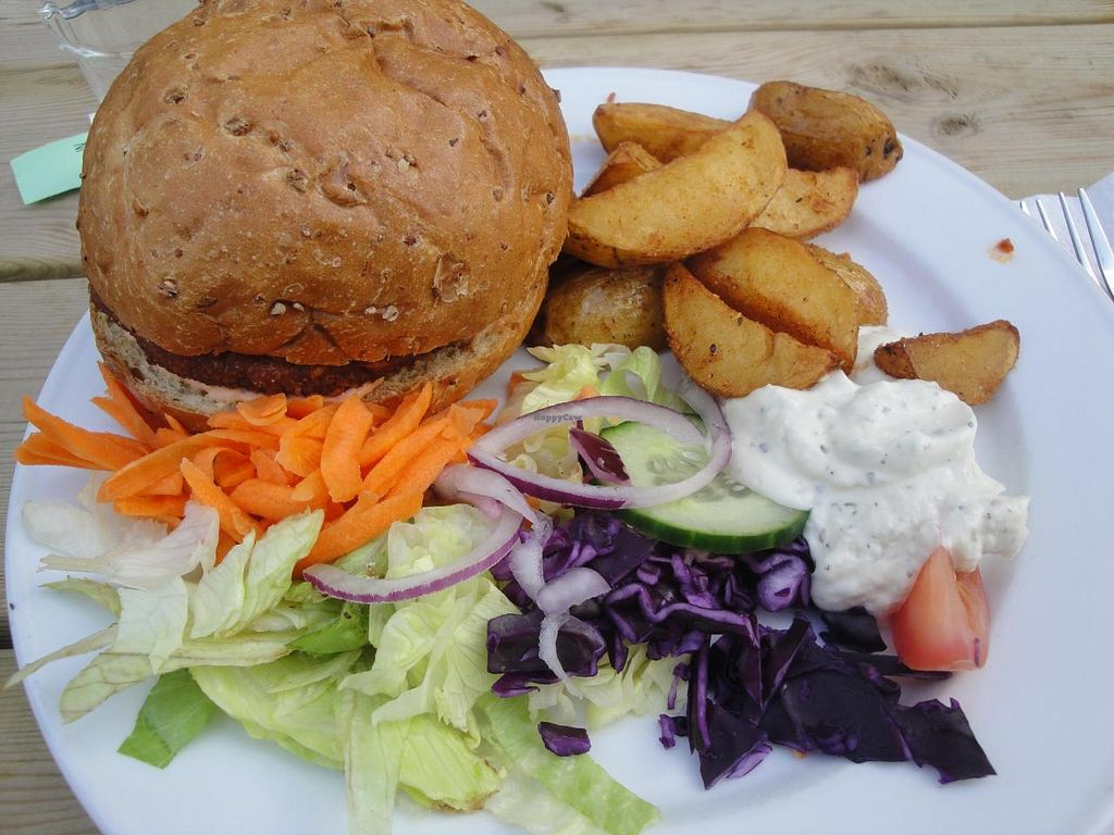 "Photo of Sodermanna Vegetariska  by <a href=""/members/profile/%2B%2B%2BVeGaNiSaToR%2B%2B%2B"">+++VeGaNiSaToR+++</a> <br/>vegan burger with good potatoes <br/> September 10, 2014  - <a href='/contact/abuse/image/1184/79484'>Report</a>"