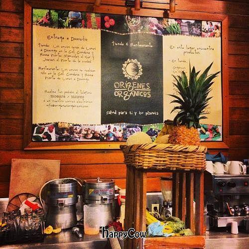 "Photo of Origenes Organicos  by <a href=""/members/profile/LynnGilmartin"">LynnGilmartin</a> <br/>Origenes Organicos Restaurant in Condesa, Mexico City <br/> May 20, 2013  - <a href='/contact/abuse/image/11954/48412'>Report</a>"