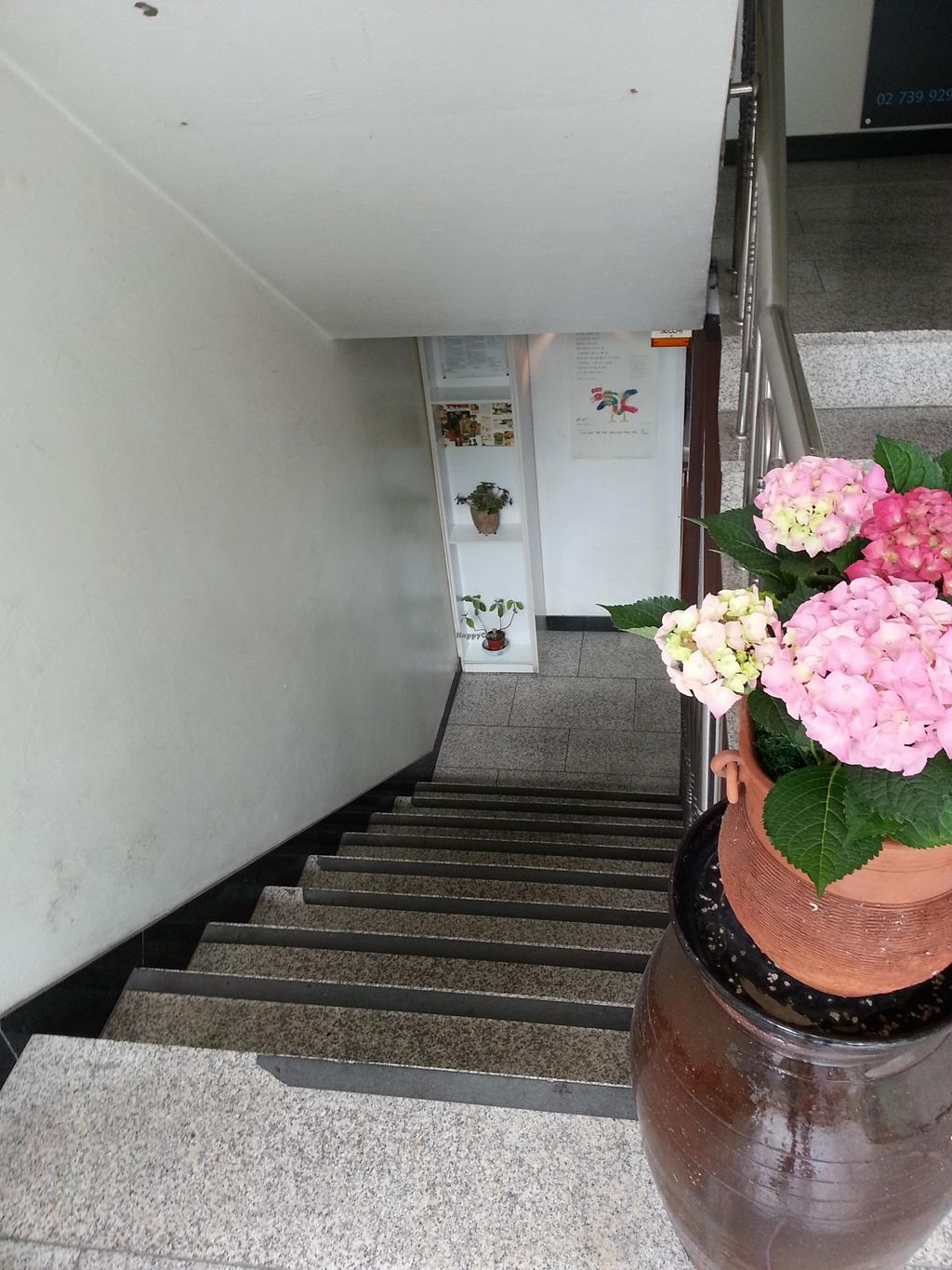 """Photo of Han Gwa Chae - 한과채  by <a href=""""/members/profile/inthesewords"""">inthesewords</a> <br/>The entrance - you go down these stairs to the place <br/> May 9, 2016  - <a href='/contact/abuse/image/11982/148167'>Report</a>"""